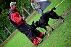 Syracuse Working Dog Club Training (2012)